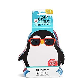 Amazon.com: Enfriadores Fit & Fresh, paquetes de hielo ...