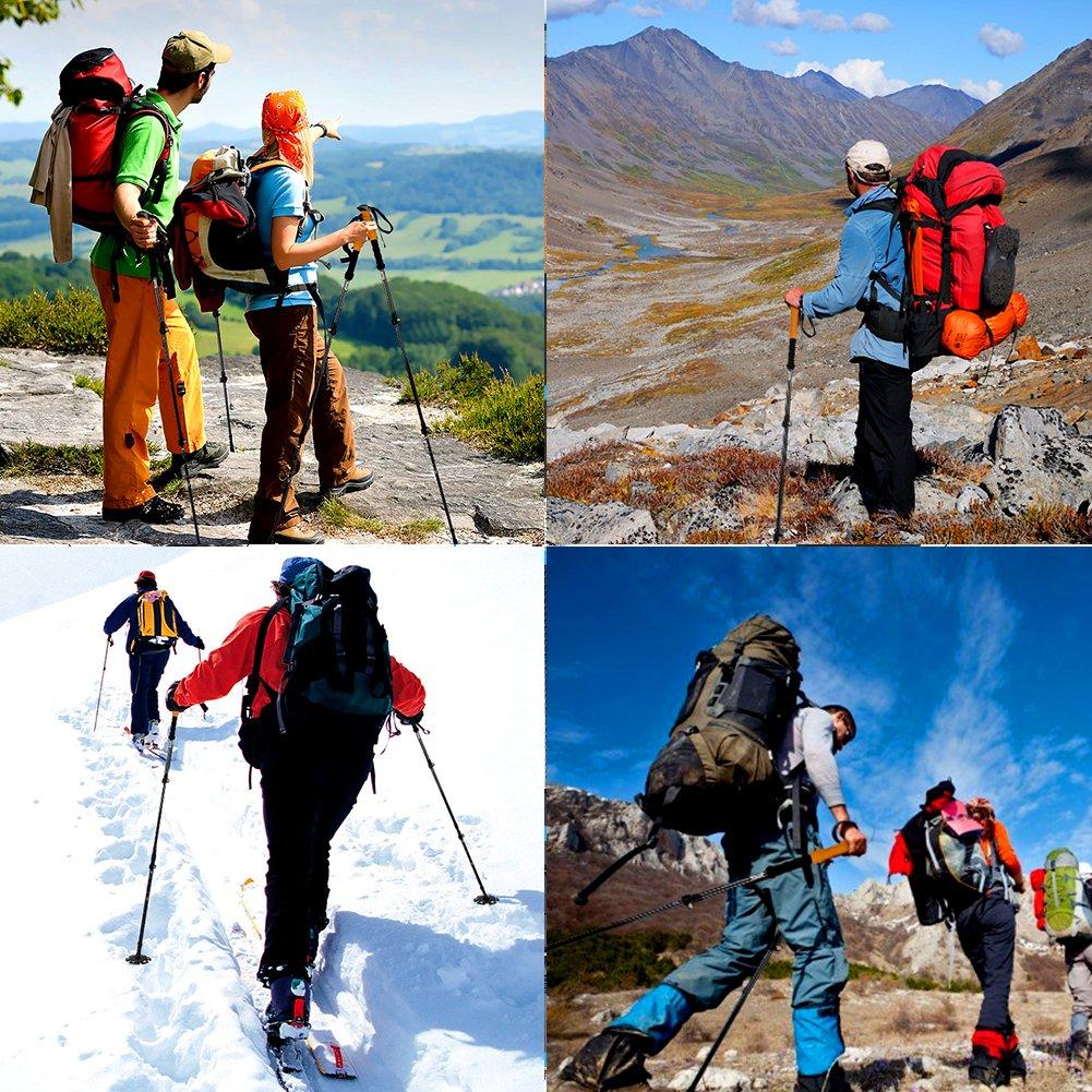 erfecto para Senderismo Caminar 2 Piezas LYDUO Bastones de Trekking Bast/ón Extensible Ultraligero Bast/ón de Senderismo para Hombres y Mujeres Azul Viajes de Mochilero Viajar