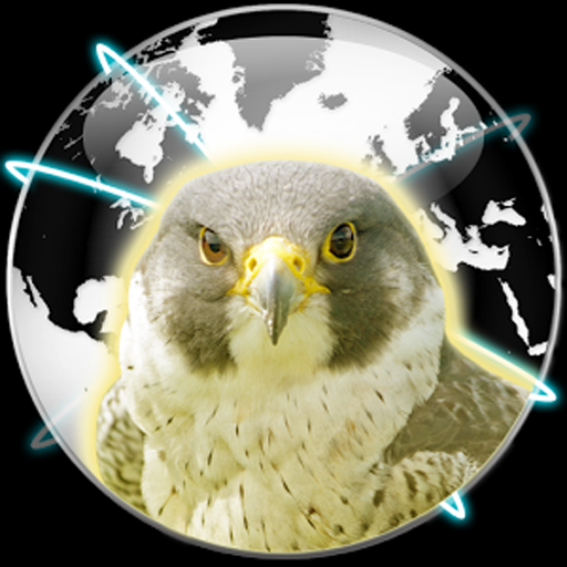 Falcon Private Browser