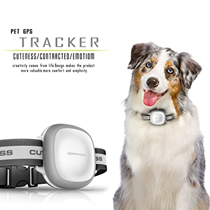 COL PETTI Pet Tracker, Pet GPS Smart Navigator Perro Anti-Lost Collar Impermeable Mini