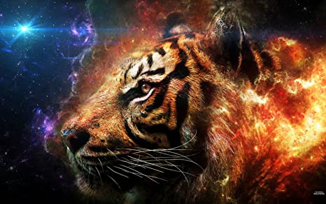 Amazon Com The Ferocious Tiger Art Fabric Cloth Rolled Wall Poster Print Size 40 X 24 21 X 13 Posters Prints