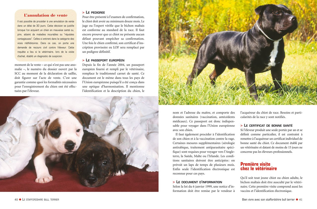 Le Staffordshire Bull Terrier 9782816003413 Amazoncom Books