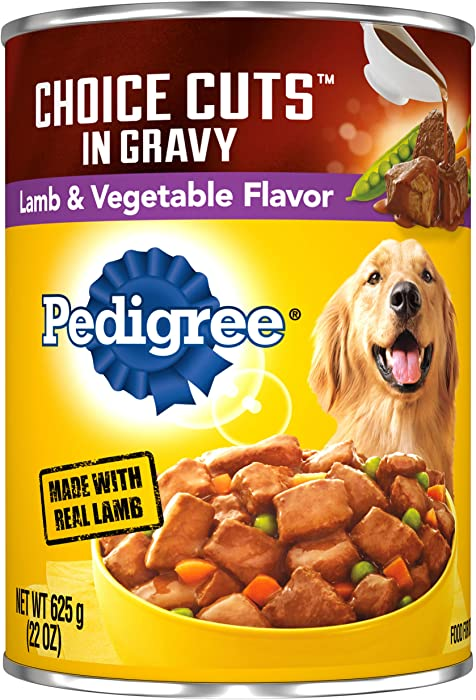 Top 6 Pedigree Dog Food 22 Ounces