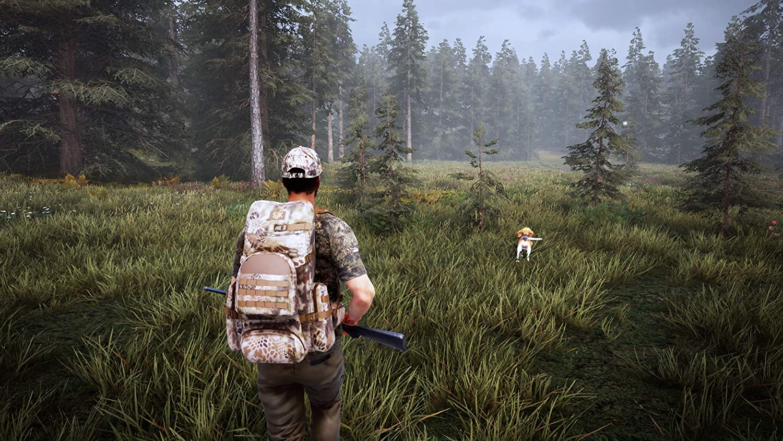 Amazon.com: Hunting Simulator 2 - PlayStation 4 (PS4): Video Games