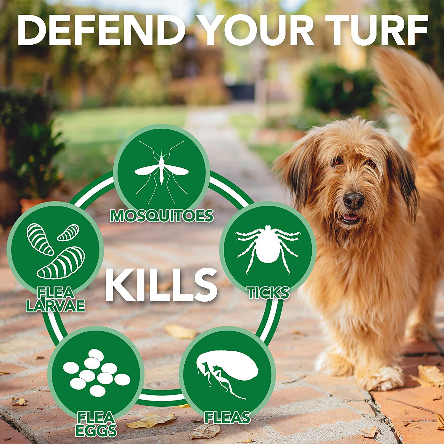 Vet's Best Flea and Tick Yard and Kennel Spray | Yard Treatment Spray Kills  Mosquitoes, Fleas, and Ticks with Certified Natural Oils