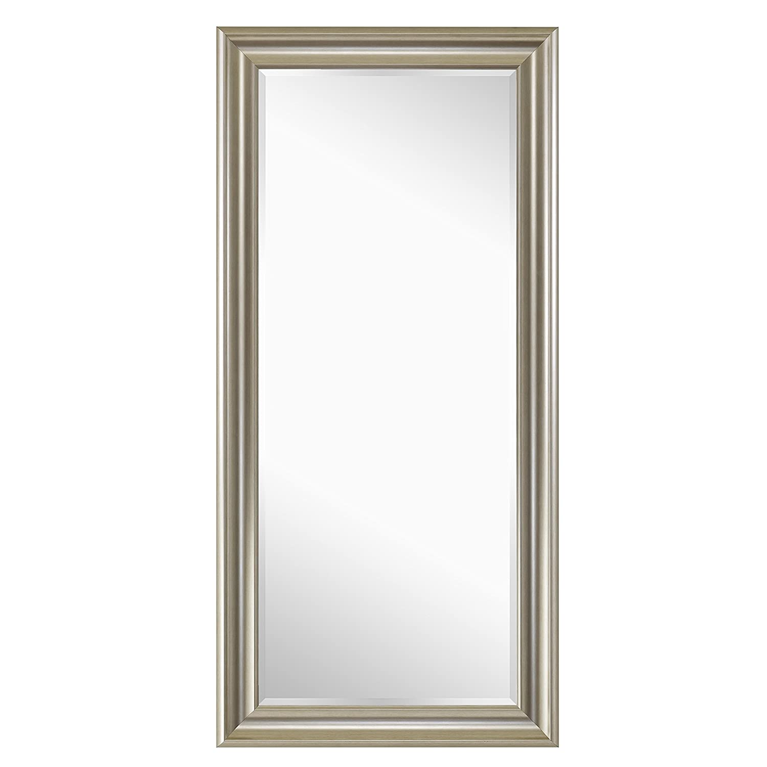 Naomi Home Framed Mirror Champagne/65 x 31