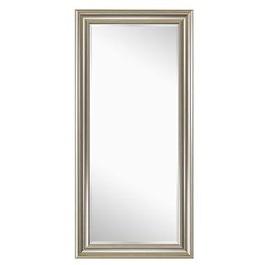 Naomi Home Framed Mirror Champagne/65 x 31