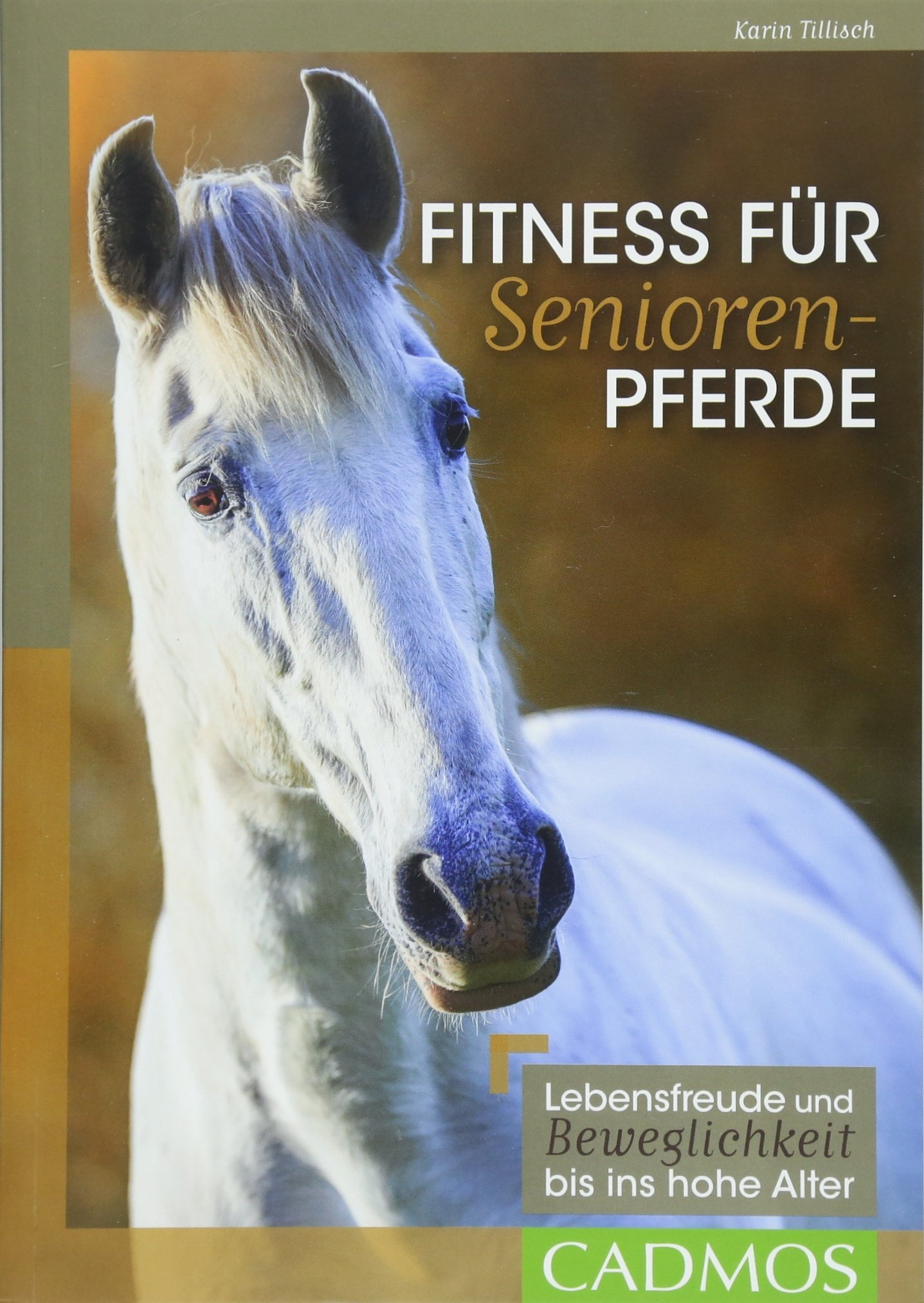 Fitness für Seniorenpferde: Lebensfreude und Beweglichkeit bis ins hohe Alter (Cadmos Reiterpraxis)