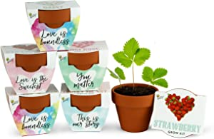 BUZZY Terracotta Mini Grow Pots | Assorted 6-Pack | Love Collection | Daisy, Strawberry, Forget-Me-Not, Mini Rose | Best Gardening Gifts and Favors | Growth Guaranteed