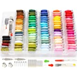 Embroidery Floss Cross Stitch Threads - Darley 99 Colors Friendship Bracelet String with Organizer Storage Box, Floss…
