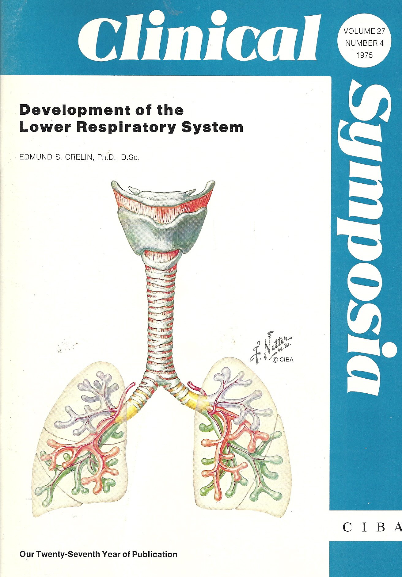 Development Of The Lower Respiratory System Clinical Symposia