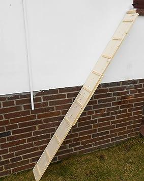 1 metro. Gato Escalera/Gato Escaleras para balcón, pino natural 20 cm, Gato Muebles, con dispositivo de sujeción,. (210op0 C): Amazon.es: Productos para ...