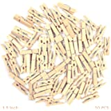 Asian Hobby Crafts Natural Wooden Photo/Paper Clips -Pack of 50