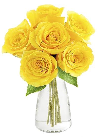 Amazon Kabloom Bouquet Of Sunshine Yellow Roses 6 Fresh Cut