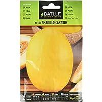 Semillas Hortícolas - Melón Amarillo Canario - Batlle