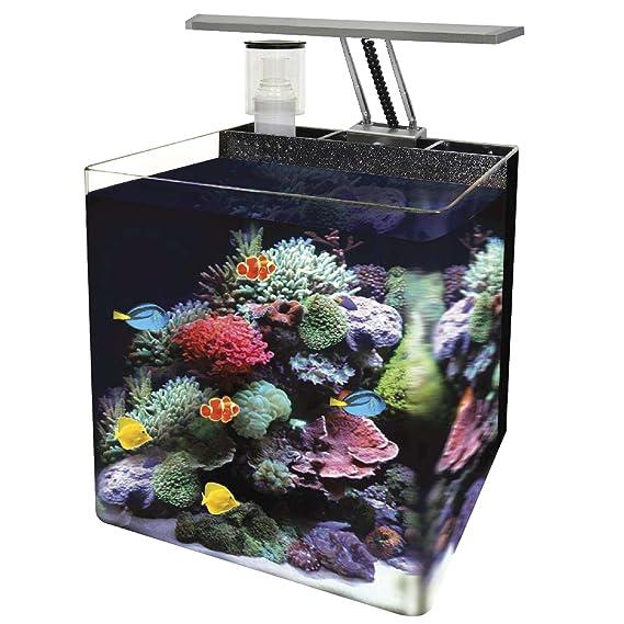 Ocean Free AT561A Nano Acuario Marino, Negro: Amazon.es: Productos para mascotas