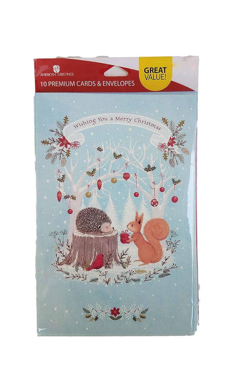 Amazon.com : Wishing You a Merry Christmas Hedgehog and Squirrel ...
