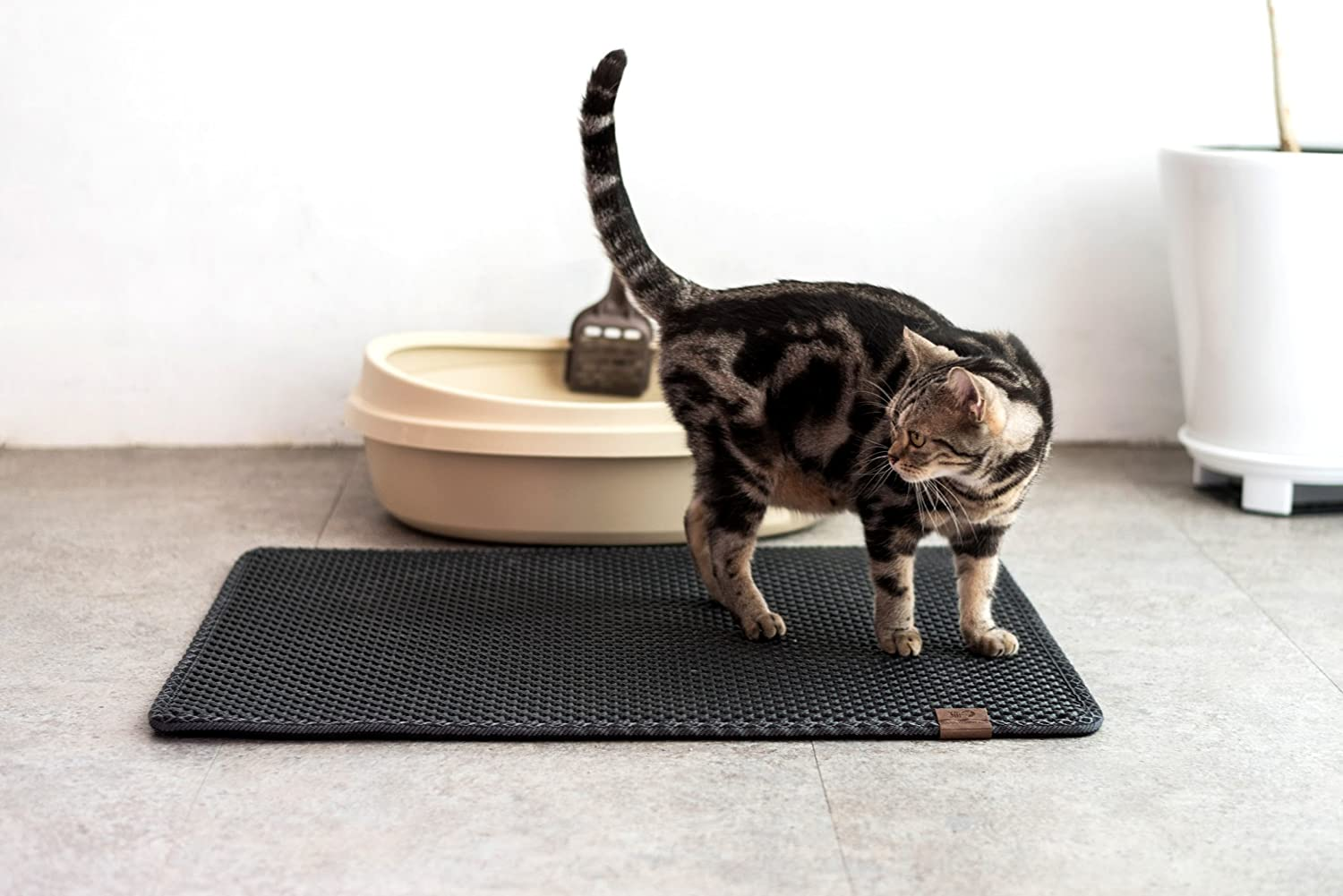 Best Cat Litter Mat 1