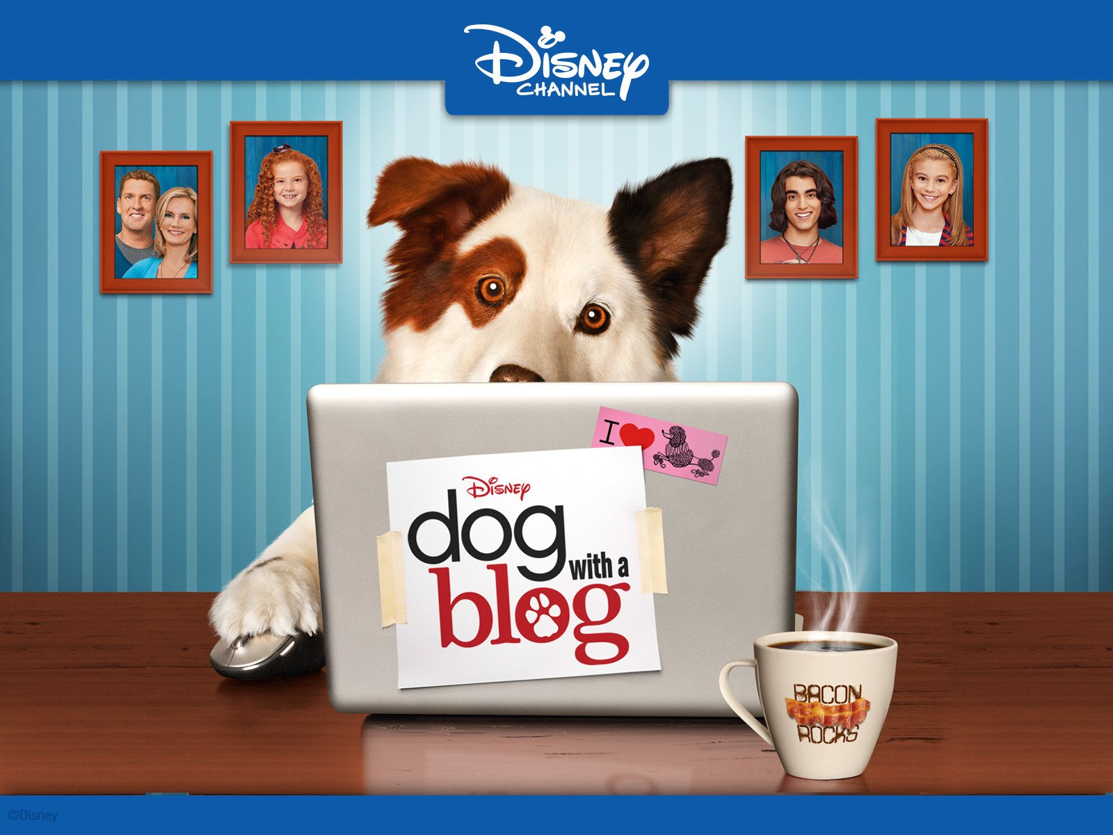 Amazoncom Watch Dog With A Blog Volume 2 Prime Video
