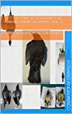 Technical taxidermy For animal studies Leather - Vol. 1: Leather preparation of a blackbird. (English Edition)