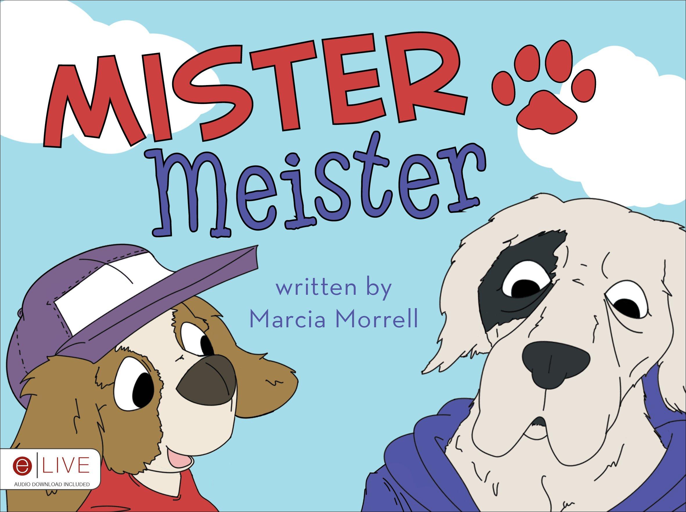Read Online Mister Meister PDF ePub book