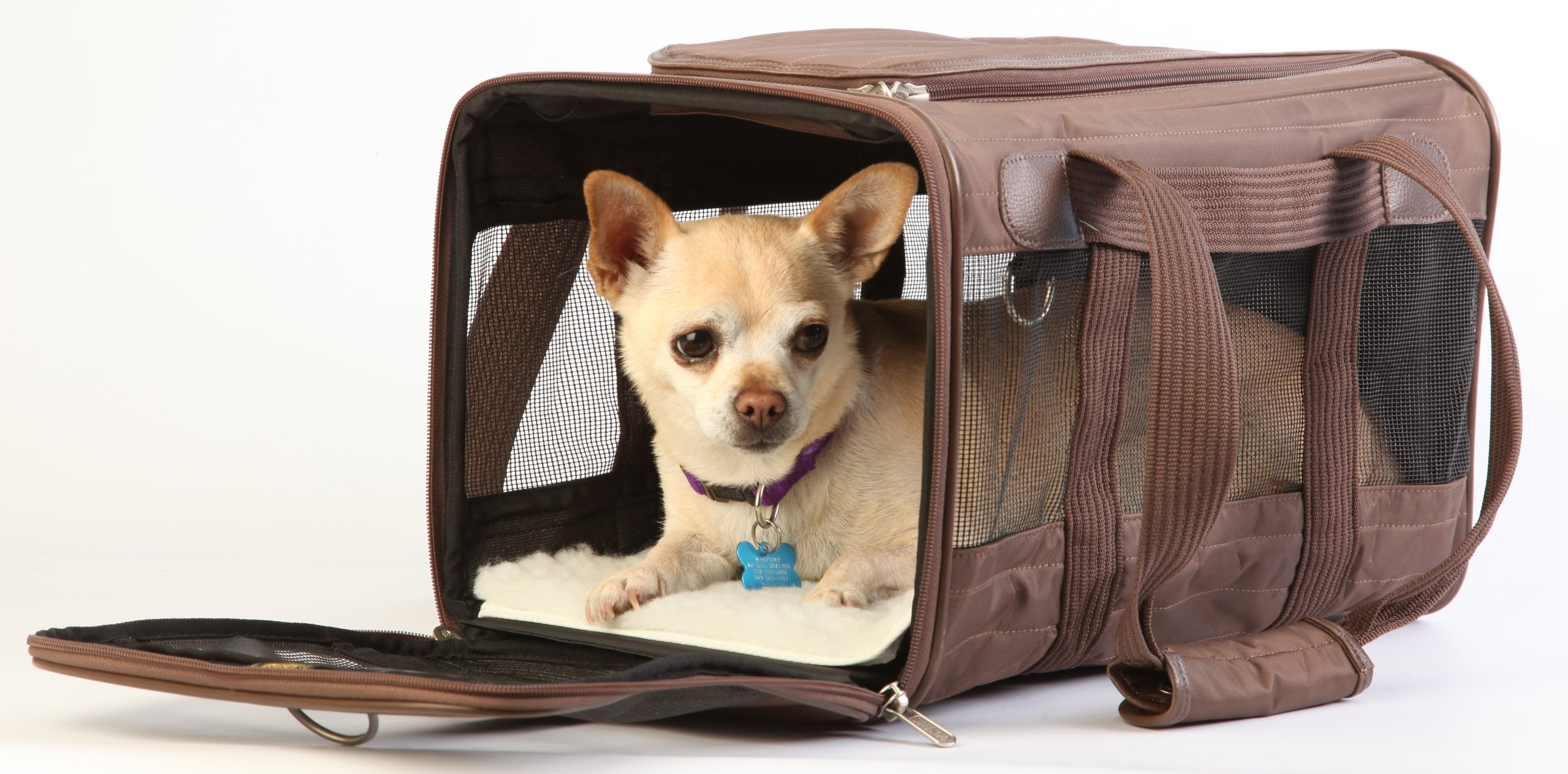 Sherpa Travel Original Deluxe Airline Approved Pet Carrier Small, Brown by Sherpa (Image #5)