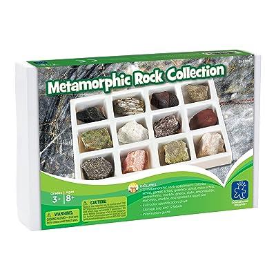 Learning Resources- Colección de Rocas metamórficas, Color (EI-5206): Juguetes y juegos