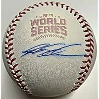 $143 » Cubs Kyle Schwarber '16 WS Signed Baseball Autographed MLB and Fanatics Hologram - Autographed Baseballs