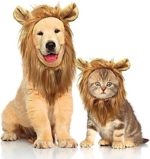 Liumei Peluca de Melena de león para Disfraz de Perro y Gato, Diadema de Pelo de león para Pelucas de Mascotas de Navidad, Pelucas de Gato, Fiesta de Halloween: Amazon.es: Productos para