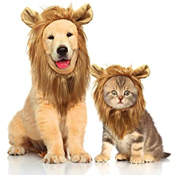 Liumei Peluca de Melena de león para Disfraz de Perro y Gato ...