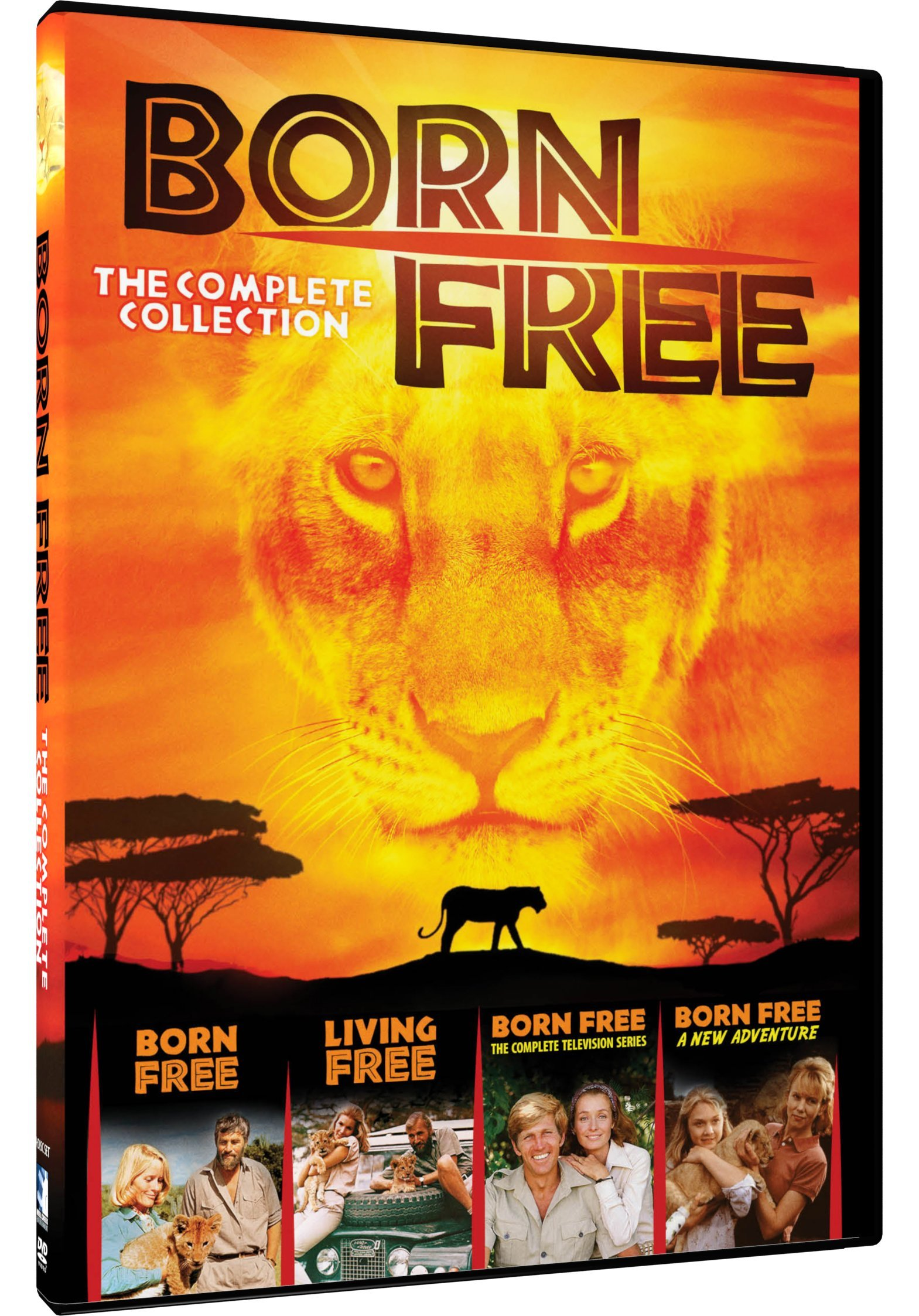 DVD : Born Free: The Complete Collection (Full Frame, 4 Pack, 4PC)
