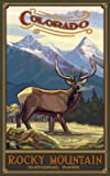 Northwest Art Mall Rocky Mountain National Park Colorado Elk Artwork by Paul A Lanquist, 11-Inch by 17-Inch