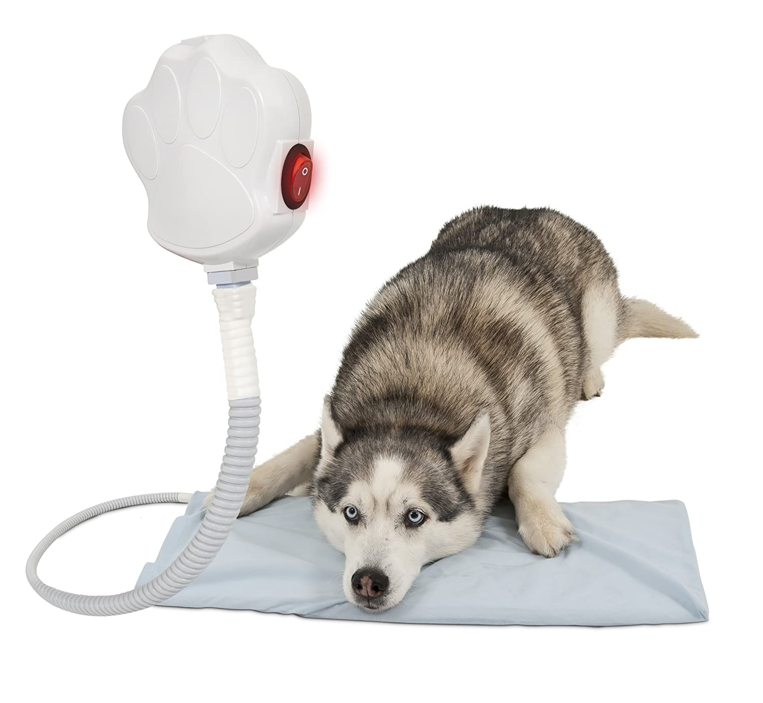 12-Inch x 24-Inch Aspen Pet Indoor Heating Pad Element, 12-Inch by 24-Inch