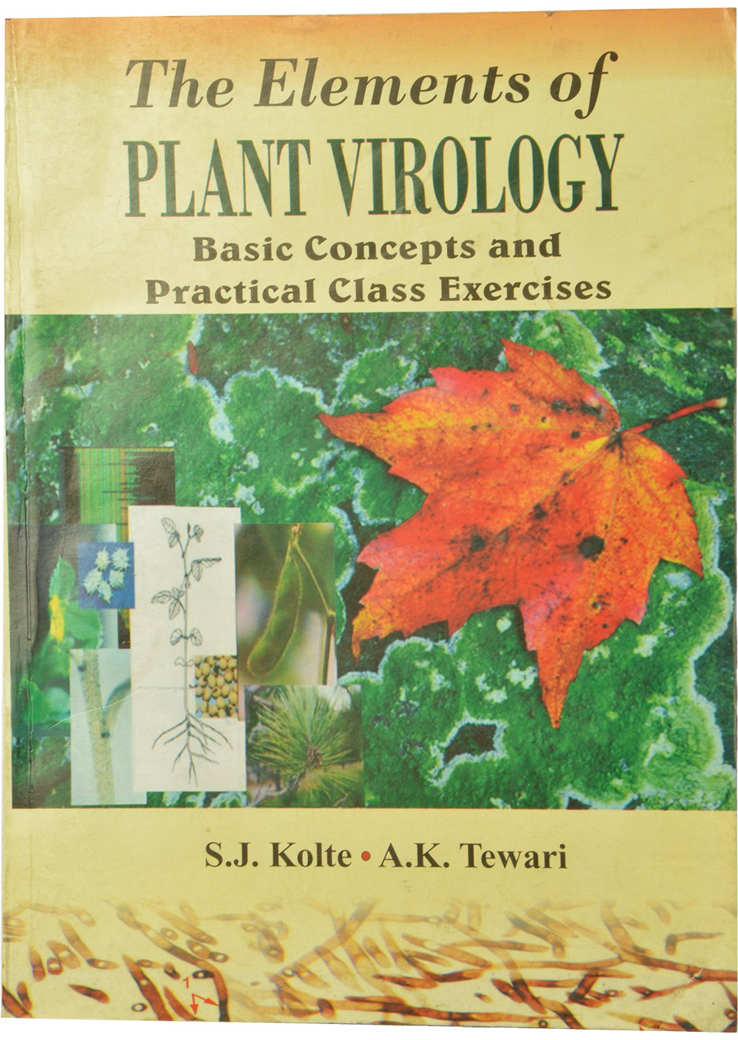 Buy The Elements of Plant Virology - Basic Concepts and Practical Class  Exercises Book Online at Low Prices in India   The Elements of Plant  Virology ...