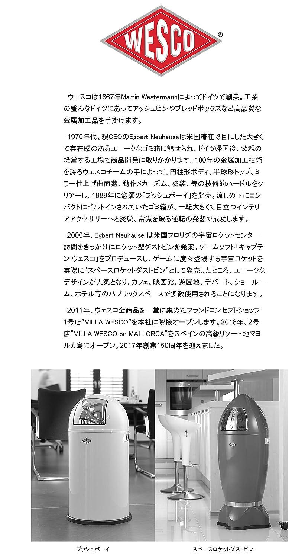 Color Plateado 2 Compartimentos de 10 litros Papelera para Reciclaje WESCO