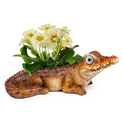 Alligator Decor Lawn Planter | Patio and Garden Decorations Outdoor Statues | Solar Yard Decor for Balcony, Deck or Lawn | Weather Resistant LED | Garden Present | Auto On/Off - (Brown): Home & Kitchen