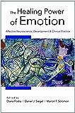 The Healing Power of Emotion: Affective Neuroscience, Development & Clinical Practice (Norton Series on Interpersonal Neurobiology)