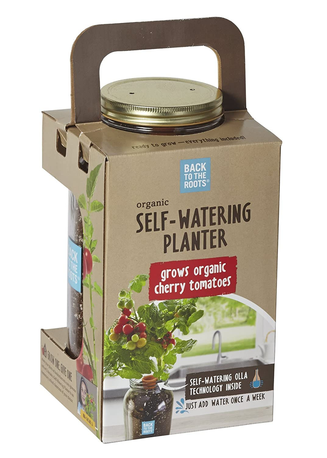 amazon com back to the roots self watering planter tomato