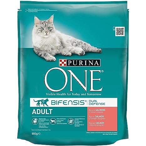 Purina ONE bifensis pienso Peri el Gato Adulto, Ricco de salmón y Cereales integrales,