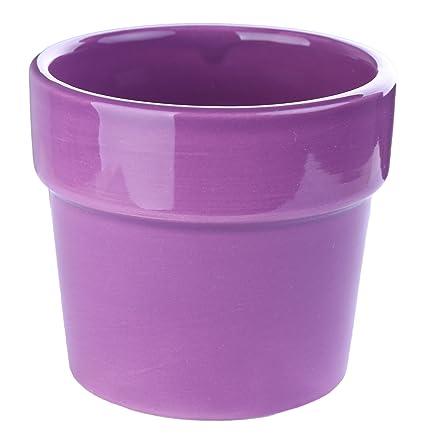 Greencherry(TM) Round Simple Design Succulent Container/Planter / Cactus Plant  Pot /