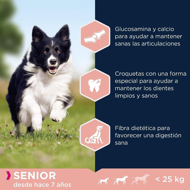 Eukanuba Alimento seco para perros senior de razas pequeñas y medianas, rico en cordero y arroz, 12 kg