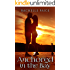 Anchored in the Bay (True North Book 1)