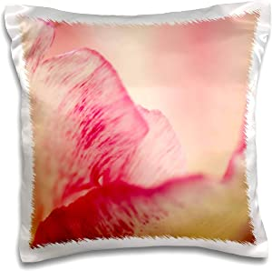 3dRose Netherlands, Lisse. Keukenhof Gardens, macro image of tulips - Pillow Cases (pc_330366_1)