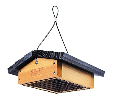 Nature's Way Bird Products CWF2 Cedar Suet Upside-Down Bird Feeder