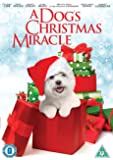 A Dog's Christmas Miracle [DVD]