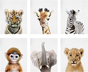"Baby Animal Posters and Prints Baby Nursery Decor Pictures Set of 6 (Unframed) Cute Animal Photography Wall Prints for Baby Boys & Girls Room YMX016 (12""X16""(30x40cm))"