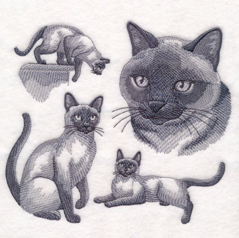 Siamese Cat Custom Embroidered Sweatshirt Shirt