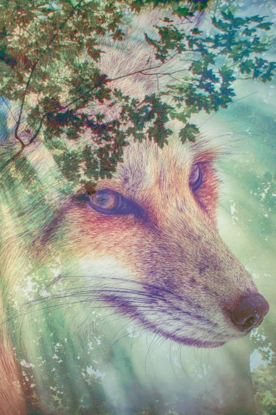 Download Wolf Forest Journal: Blank Sketchbook Artist Notebook with Unlined Drawing Paper pdf