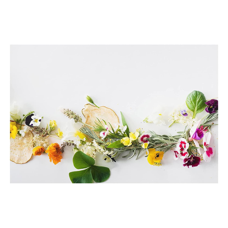 Bilderwelten Glass Splashback - Fresh Herbs With Edible Flowers - Landscape 2:3, Backsplash Cooker Splashback Protector Panel Decorative, Dimension HxW: 40cm x 60cm PPS. Imaging GmbH