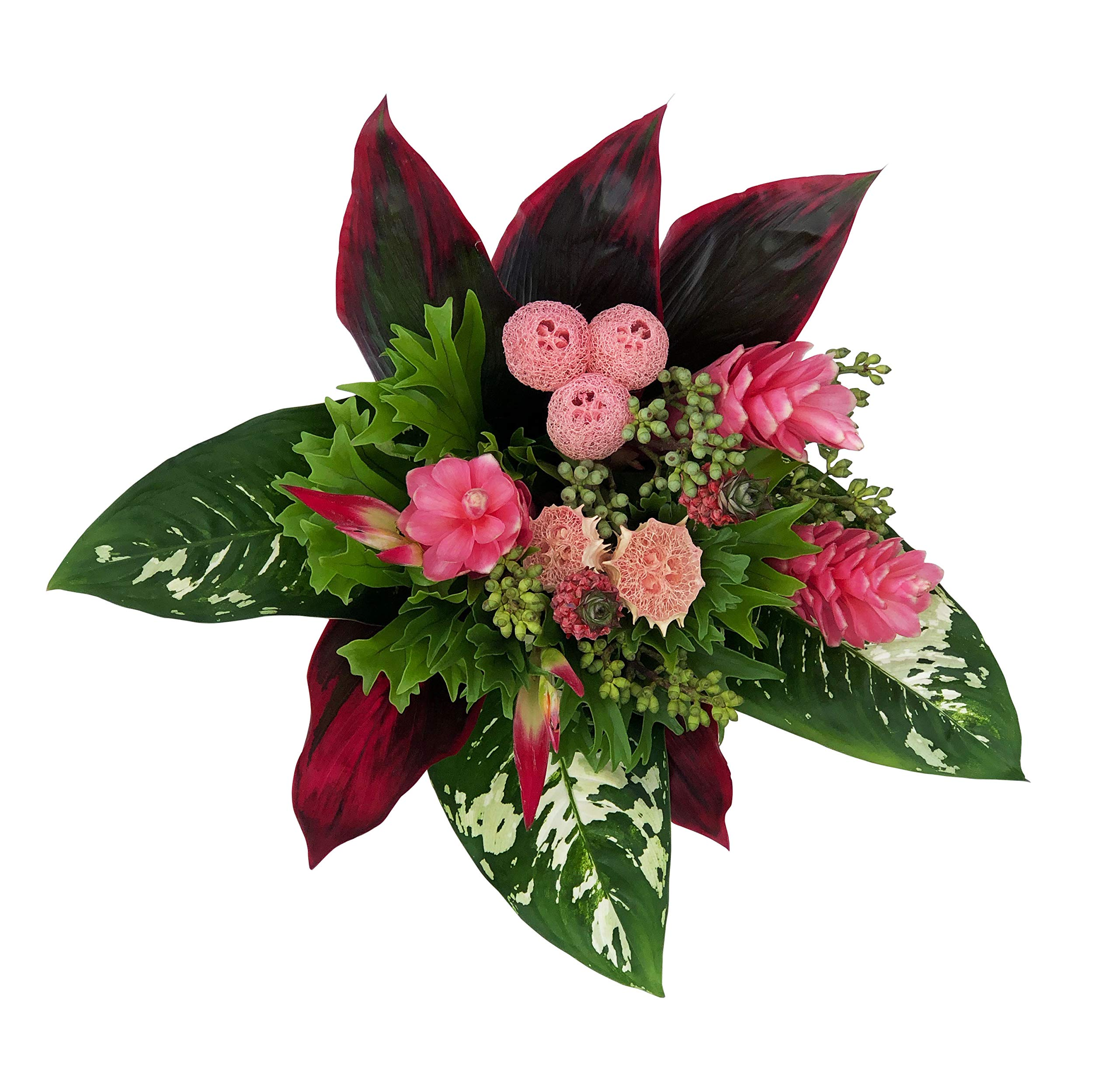 Tropical Bouquet Pink Paradise with Pink Loofah, Pink Tropical Flowers, and Lush Tropical Greenery